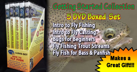 DVD Combo Set